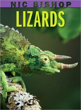 Cover: Lizards by Nic Bishop