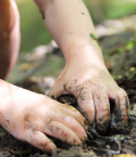Child's Hands Digging in Mud