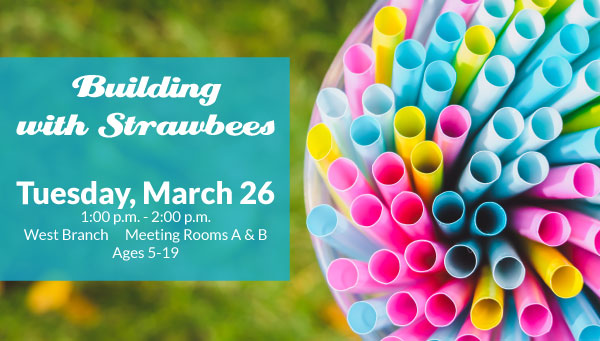 Colorful Plastic Straws with Building with Strawbees Information