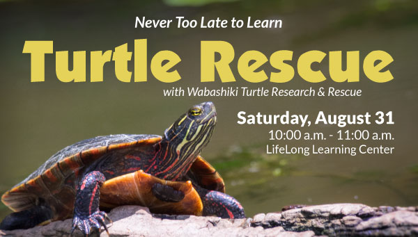 Turtle on Log in Front of Lake with Turtle Rescue Information
