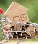 Miniature Shopping Cart with Coins and a Wooden House